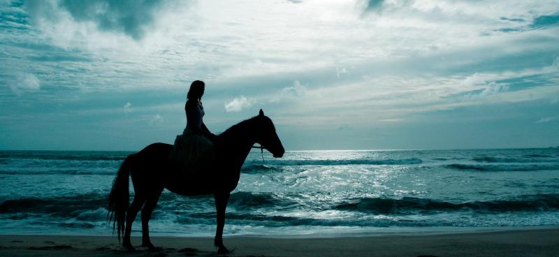 kangen for horses
